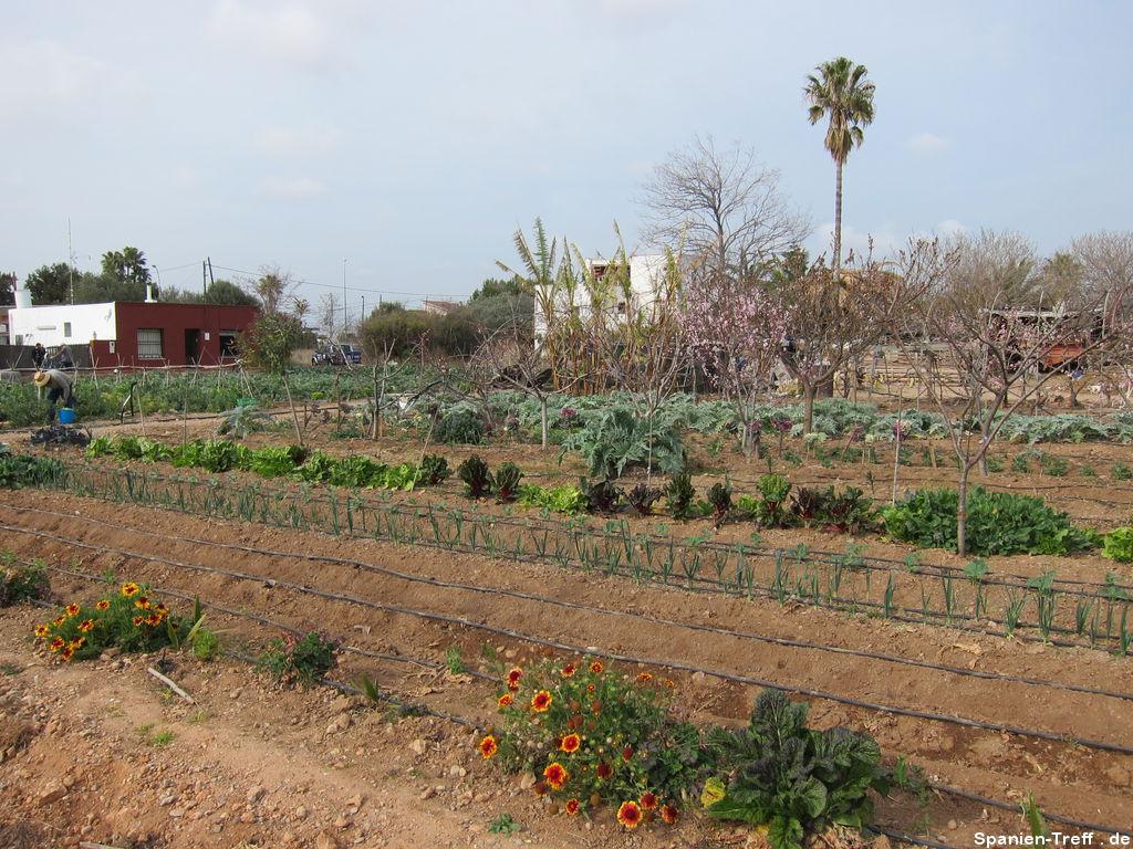 Spanischer Garten