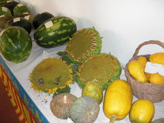 Tisch mit Gemüse und Sonneblume