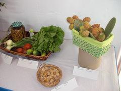 Tisch mit Gemüse, Oliven und Kakteen