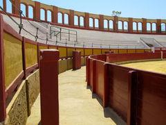 arena xxx