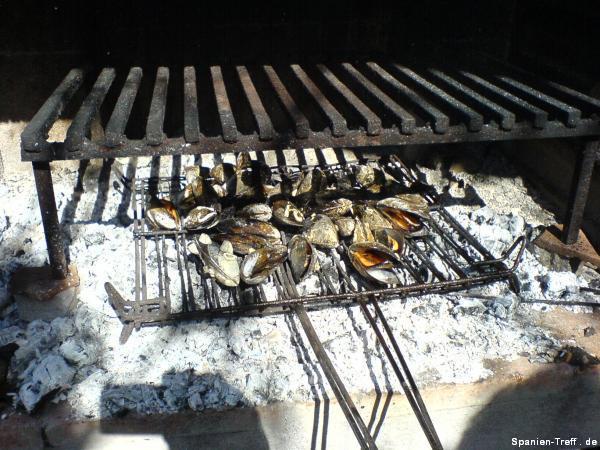 Durch Feuer geöffnete Miesmuscheln/Mejillones