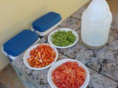 Zutaten: Bohnen, Paprika, Tomaten und Olivenöl für die Paella