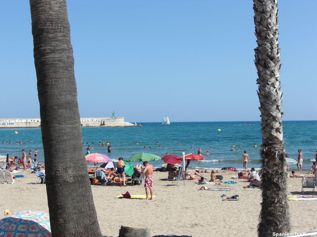 Strand von Benicarló mit Palmen