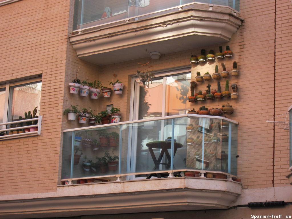 Kakteen-Samlung im Balkon
