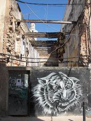 Tiger-Graffiti