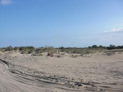 Dünen am Ebrodelta
