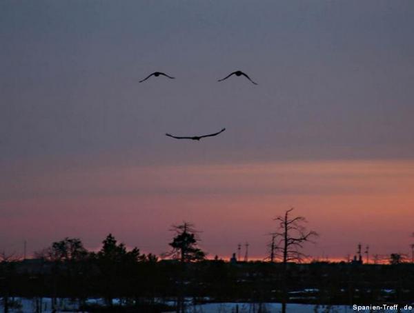 una sonrisa del cielo