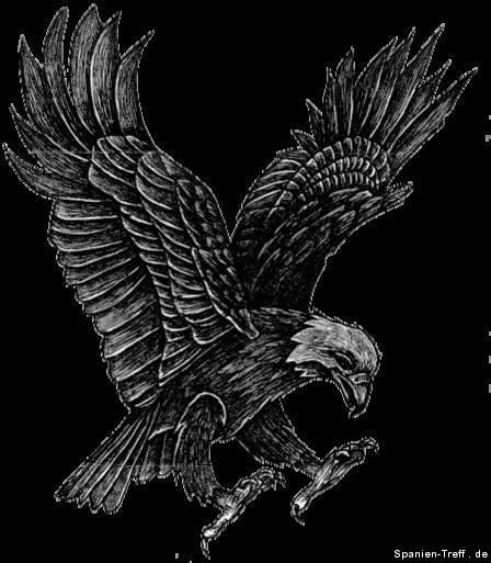 Aguila_1