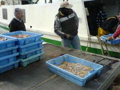 Fischfang vom Fischerboot