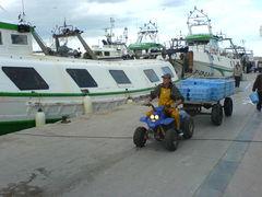 Quad transportiert Fischfang