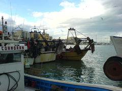Fischerbote im Hafen