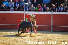 banderillas 1 - Stierkampf - Tauromaquia - corrida de toros