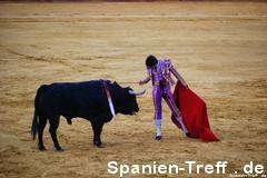 muleta 4 - Stierkampf - Tauromaquia - corrida de toros