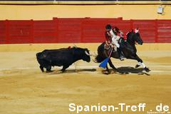 rejoneo 1 - Stierkampf - Tauromaquia - corrida de toros